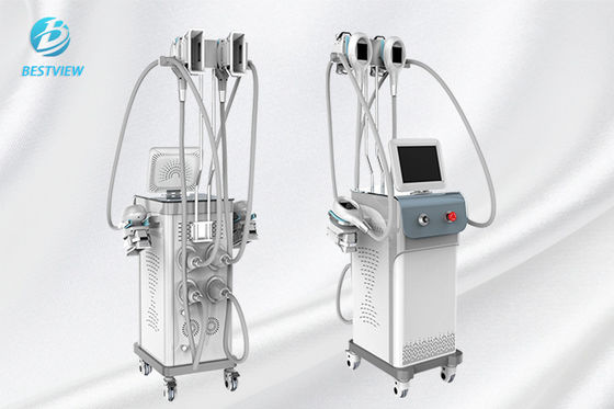 China Fat Reducing Cryolipolysis Slimming Machine  / Cryolipolysis At Home Machine factory